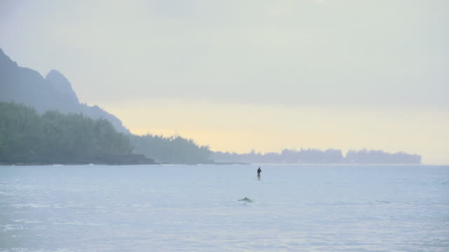 ws view of man in distance paddle boards on water with trees and mountain / oahu, hawaii, united states - wiese stock videos & royalty-free footage
