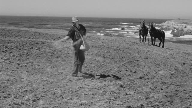 ws view of man sowing seed on ground with horse and ocean in distance - sowing stock videos & royalty-free footage