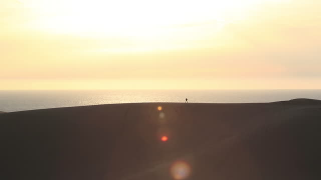 ws view of man walking on sand dunes / tottori, tottori prefecture, japan  - abgeschiedenheit stock-videos und b-roll-filmmaterial