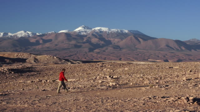 ms pan view of man walking through atacama valley with mountains / angostura, chile - atacama region stock videos & royalty-free footage