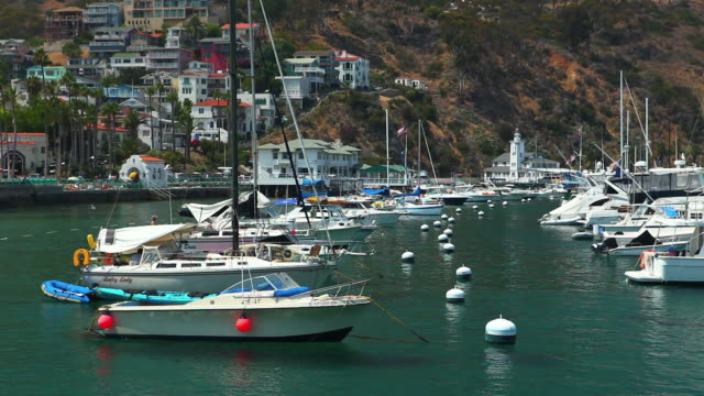 vídeos y material grabado en eventos de stock de ms view of marina with hillside town in background / catalina island, ca, united states  - islas del canal