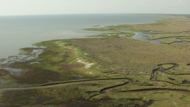 WS View of marshland on Taylor County / Florida, United States