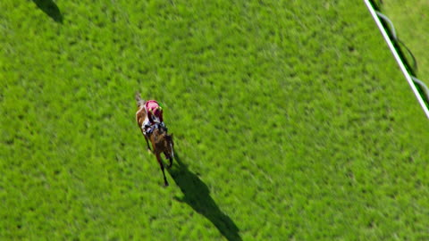 ms aerial slo mo ts view of melbourne cup horse racing / melbourne, victoria, australia - 1 minute or greater stock videos & royalty-free footage