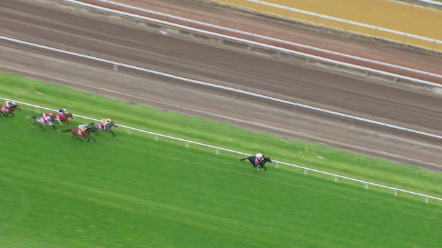 ws aerial zi zo view of melbourne cup horse racing / melbourne, victoria, australia - racehorse stock videos and b-roll footage