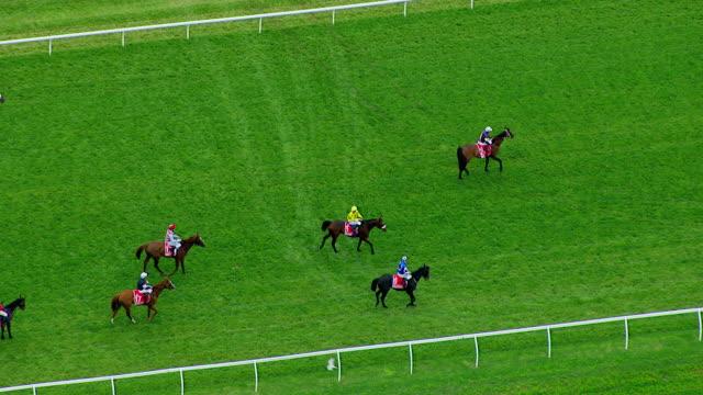 vídeos de stock, filmes e b-roll de ms aerial view of melbourne cup horse racing / melbourne, victoria, australia - animal de trabalho