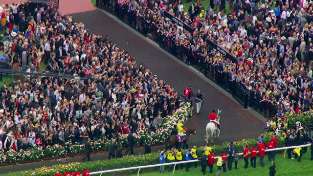 ws aerial zo view of melbourne cup horse racing / melbourne, victoria, australia - wachpersonal stock-videos und b-roll-filmmaterial