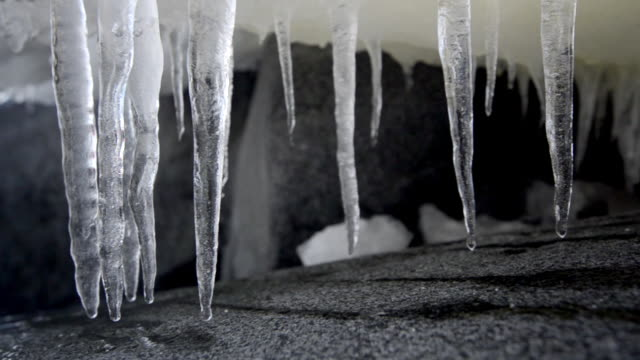 cu view of melting icicles / antarctica - icicle stock videos and b-roll footage