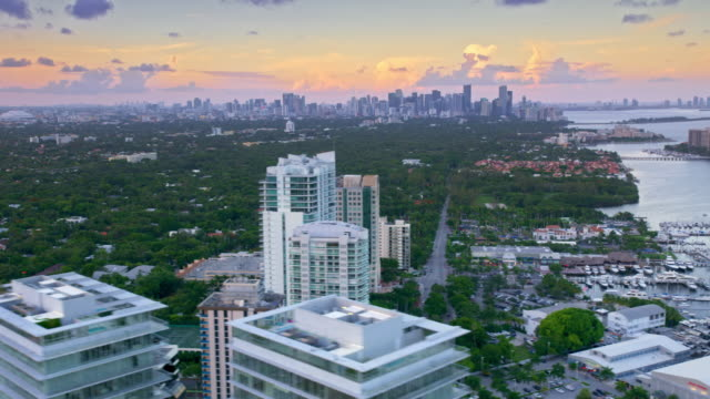 aerial view of miami at sunset from the coconut grove, fl - grove stock videos & royalty-free footage