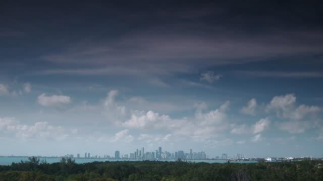 view of miami skyline from crandon park - baia di biscayne video stock e b–roll
