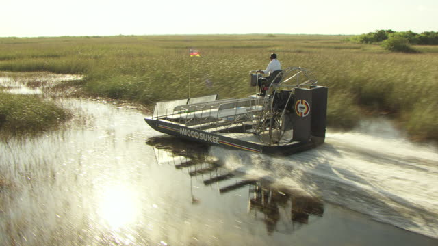 ms aerial ts view of miccosukee airboat moving on water in everglades / florida, united states - everglades national park stock videos & royalty-free footage