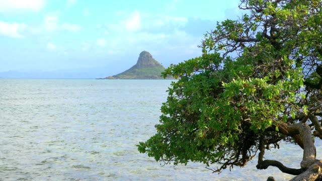 View of Mokolii Island on Oahu Hawaii in 4K Slow motion