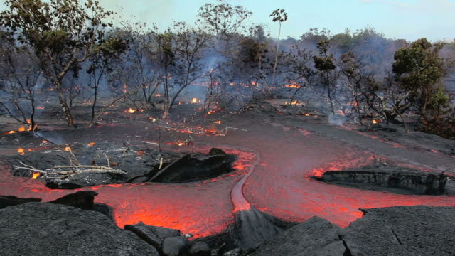 ws view of molten lava flowing through forest and burning vegetation / kalapana, hawaii, usa - vulcano video stock e b–roll