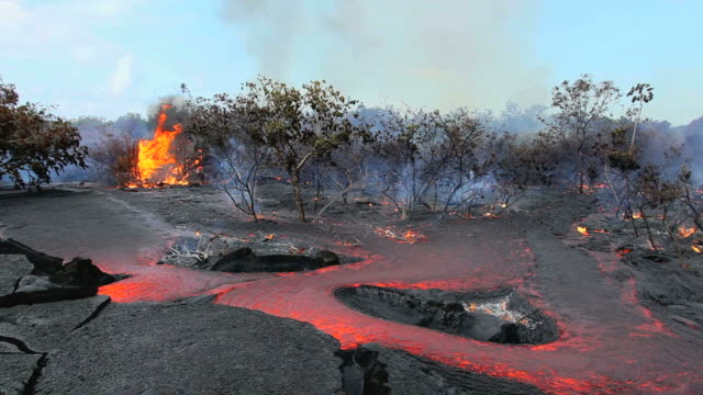 ws view of molten lava flowing through forest and burning vegetation / kalapana, hawaii, usa - eruzione video stock e b–roll