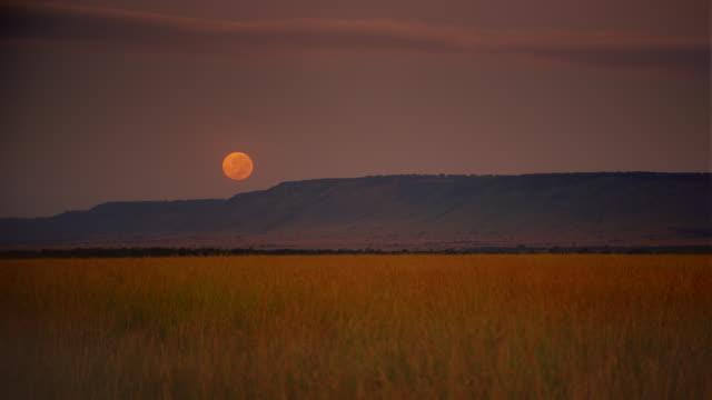 WS View of Moon rising over grassland with ridge / Masai Mara, Kenya