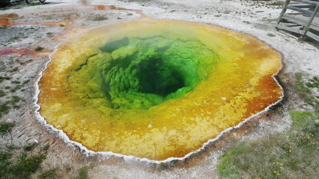 WS View of Morning glory pool yellowstone national park / Montana, United States