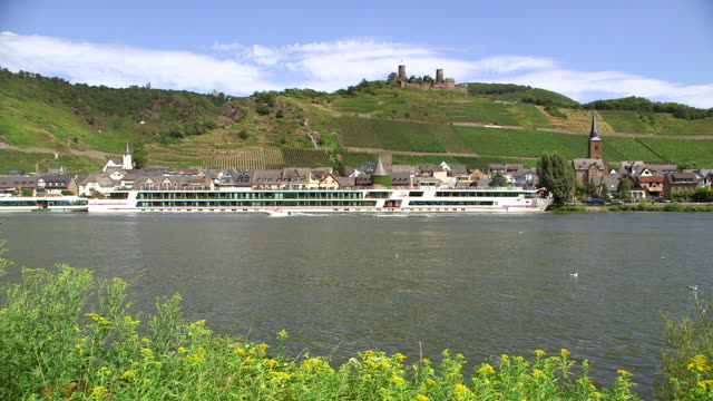 vidéos et rushes de ws view of moselle valley with thurand and castle / alken, moselle valley, rhineland palatinate, germany - petit groupe d'animaux
