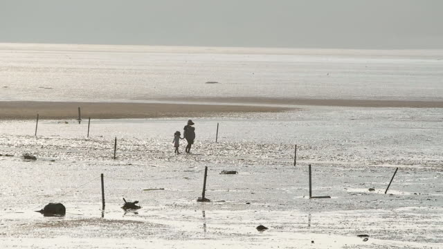 ws view of mother and girl walking on mud flat in yeongjong do island / incheon, south korea - mud flat stock videos and b-roll footage