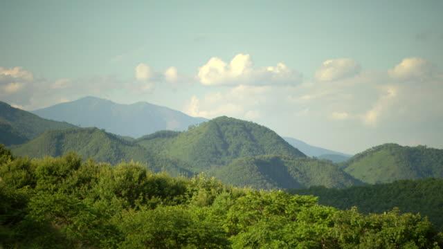 WS PAN View of Mountain forest / Fukashima, Tohoku, Japan