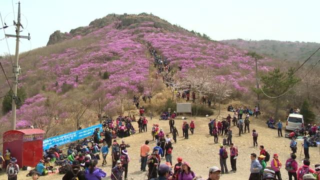 vídeos de stock, filmes e b-roll de ws view of mountain hikers in yeosu yeongchwisan mountain / yeosu, jeollanam-do, south korea - artigo de vestuário para cabeça