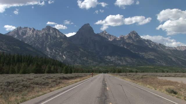 vidéos et rushes de view of mountain road in grand teton united states - seulement des jeunes hommes
