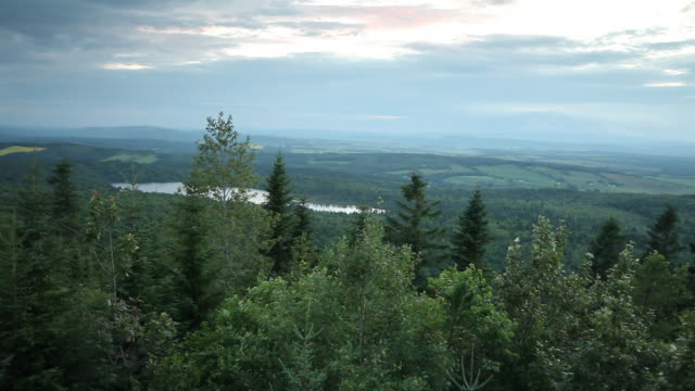 vidéos et rushes de view of mountains and river from the top of the trees - cîme d'un arbre