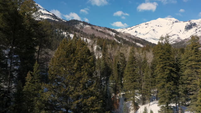 view of mountains from the sky lowering into the forest - american fork canyon bildbanksvideor och videomaterial från bakom kulisserna