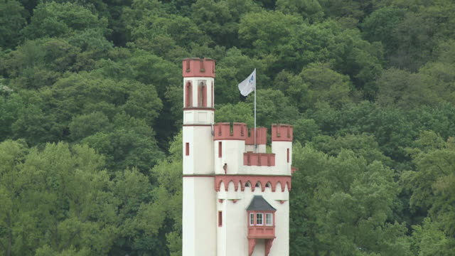 ws zo view of mouse tower near bingen / rhine-valley, rhineland-palatinate, germany - plant attribute stock videos and b-roll footage