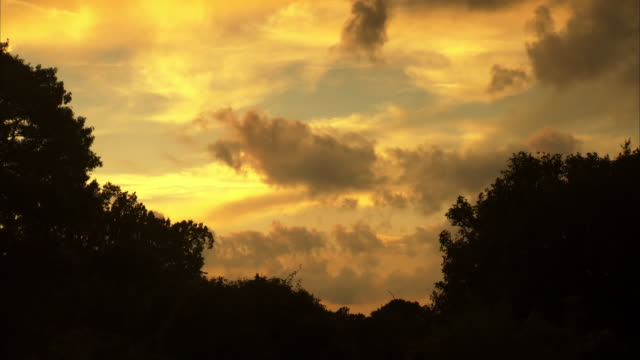 WS View of moving clouds in sky during sunset / Port Royal, Virginia, United States