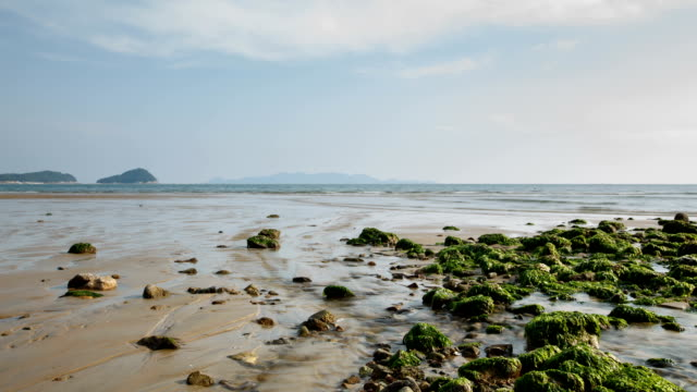view of mud flat in low tide - low tide stock videos & royalty-free footage