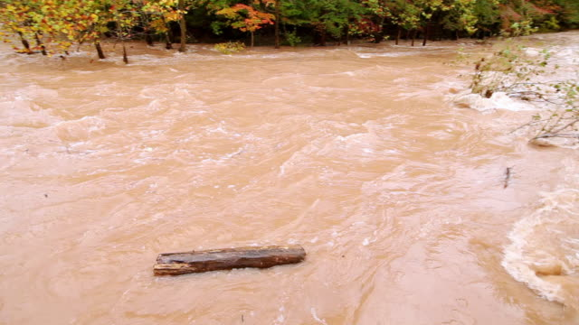 ms pan view of muddy flood stream with sawkill creek / saugerties, new york, united states - log stock videos & royalty-free footage