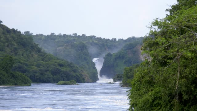 view of murchison falls from tour boat - parco nazionale video stock e b–roll