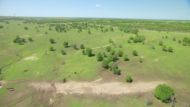 vídeos y material grabado en eventos de stock de ws aerial ds view of mustangs running through farmland in osage county / oklahoma, united states - galopar
