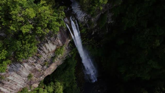 view of nachi falls in daimonzaka, wakayama, japan - insel honshu stock-videos und b-roll-filmmaterial