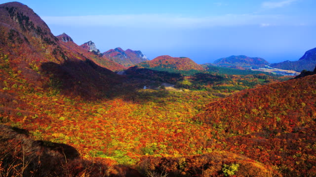 WS T/L View of Nari basin covered with varicolored autumn leaves / Ulleung, Gyeongsangbuk do, South Korea
