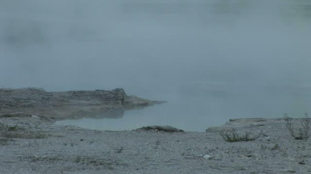 vídeos y material grabado en eventos de stock de view of natural geyser in yellowstone national park of wyoming united states - usa
