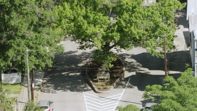 vidéos et rushes de ms zo aerial pov view of neighbourhood area / charleston, south carolina, united states - panneau d'entrée