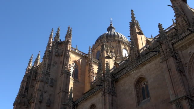 View of New Cathedral of Salamanca with Birds