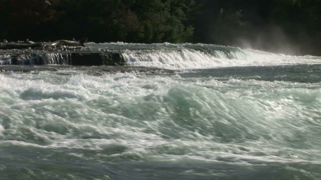 view of niagara river in new york united states - niagara river stock videos & royalty-free footage
