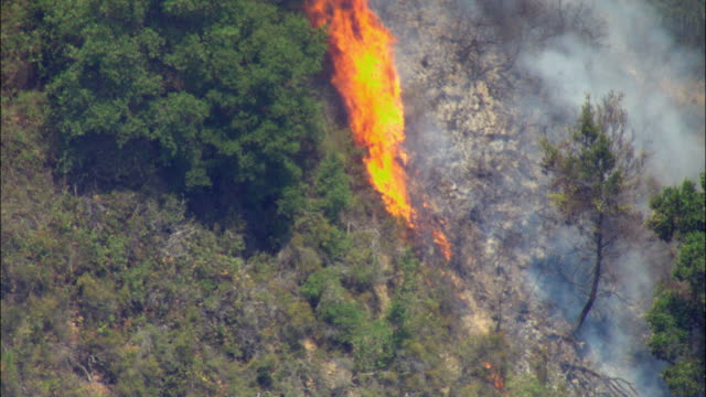 ws zo pov aerial view of northern california forest fire spreading rapidly through wooded landscape / california, usa - 2008 stock videos and b-roll footage
