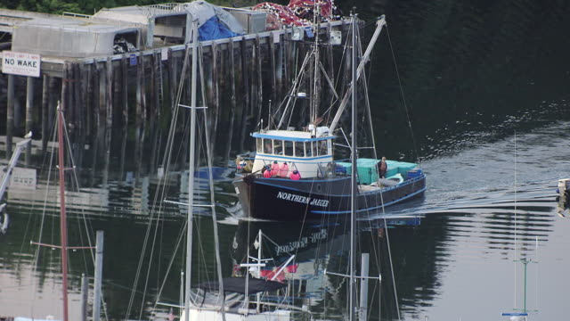 MS AERIAL ZO View of Northern Jaeger coming into dock to boats docked in St Hermans Harbor / Kodiak, Alaska, United States