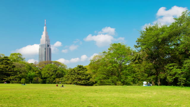 vídeos de stock, filmes e b-roll de ws t/l view of ntt docomo communication tower and japanese flag seening from yoyogi park with people relaxing on grass / tokyo, japan - parque natural