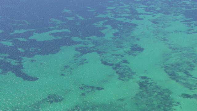 ws aerial view of ocean / adelaide, australia - アデレード点の映像素材/bロール
