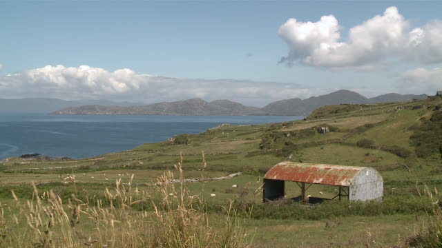 ws view of ocean and field / allihies,  county cork, ireland - county cork stock videos & royalty-free footage