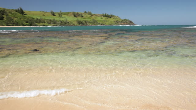 ws view of ocean and sandy beach / moloaa beach kauai, hawaii, united states - isola di kauai video stock e b–roll