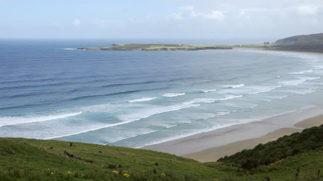 WS PAN View of Ocean and Shore / Catlins, New Zealand