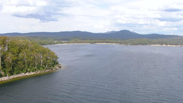 ws aerial view of ocean and trees near beach / adelaide, australia - coastline stock videos & royalty-free footage