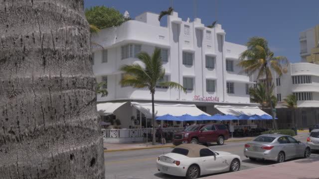 view of ocean drive from palm trees, miami beach, south beach, miami, florida, united states of america, north america - オーシャンドライブ点の映像素材/bロール