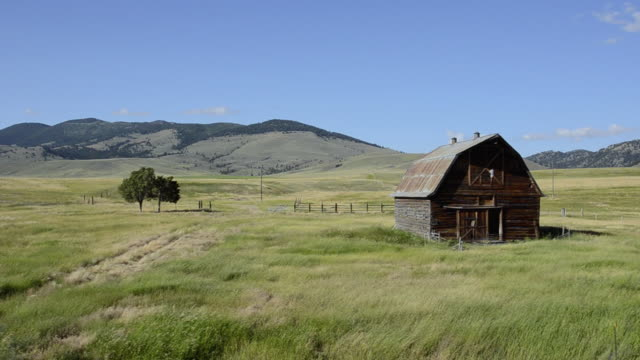 ws pan view of old barn in open field / butte, montana, united states - butte montana stock videos & royalty-free footage