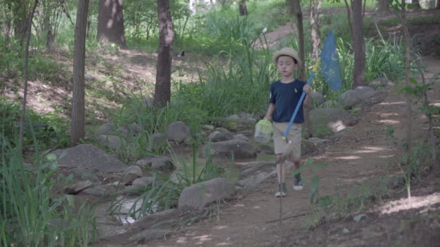 View of one boy ready for collecting insects with a butterfly net in summer at Seoulforest (the third largest park in Seoul city)