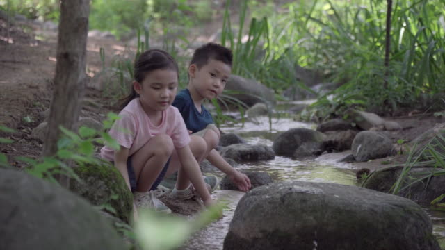 View of one girl and one boy playing in stream in summer at Seoulforest (the third largest park in Seoul city)